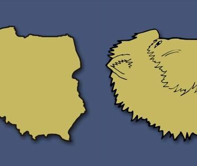 Niemieckiemu artyście Polska przypomina głowę lwa