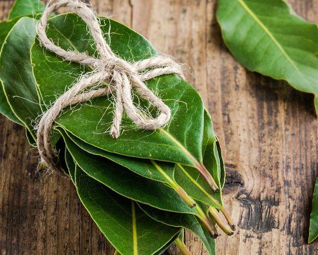 Liść Laurowy w kuchni - potrawy, właściwości