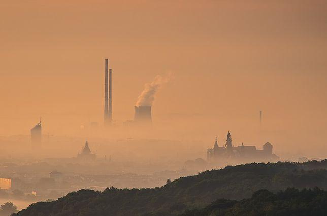 Władze walcząc ze smogiem zamkną 2,5 tys. małych firm. Problemy z powietrzem także w Europie