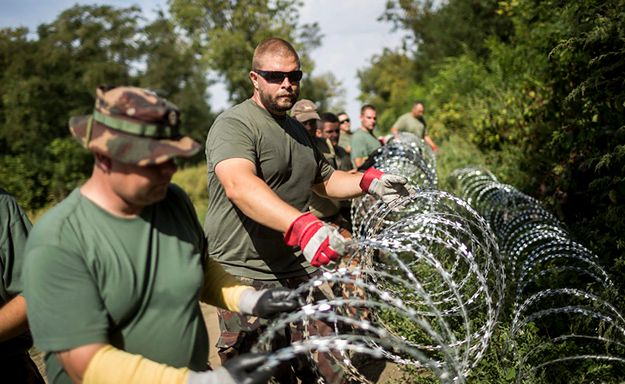 Węgierscy żołnierze ustawiają ogrodzenie na granicy z Chorwacją