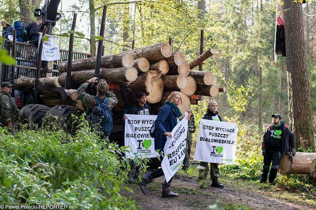 Protesty w Puszczy Bialowieskiej