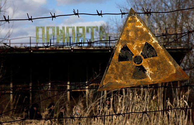 Grzyby z Czarnobyla wykazują niezwykłą odporność na promieniowanie