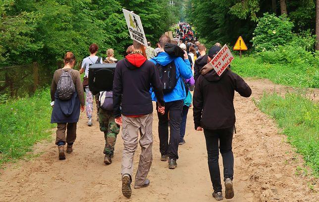 Ludzie protestujący w Puszczy Białowieskiej