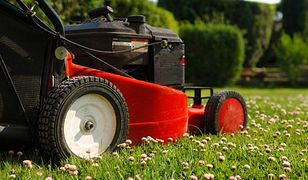 Jeśli nie chcesz zakłócać spokoju w okolicy podczas koszenia trawnika, lepiej wybrać model z napędem elektrycznym.
