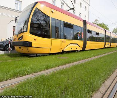 Zazielenia tory tramwajowe. Po raz pierwszy w stolicy
