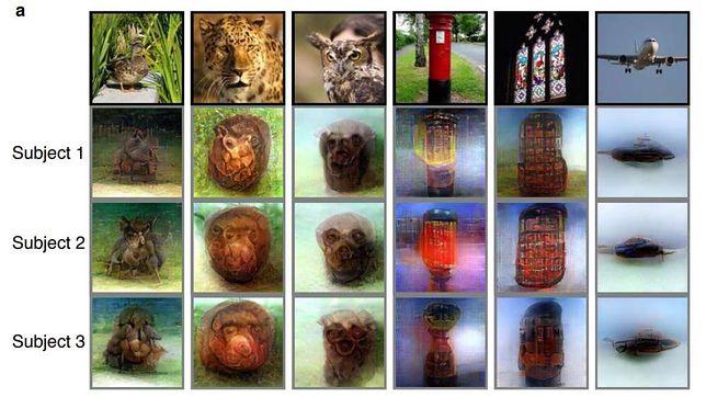 Obrazy przypominają kształtami to, co widzimy