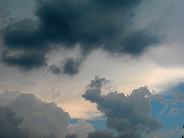Synoptycy ostrzegają przed silnym wiatrem na Pomorzu