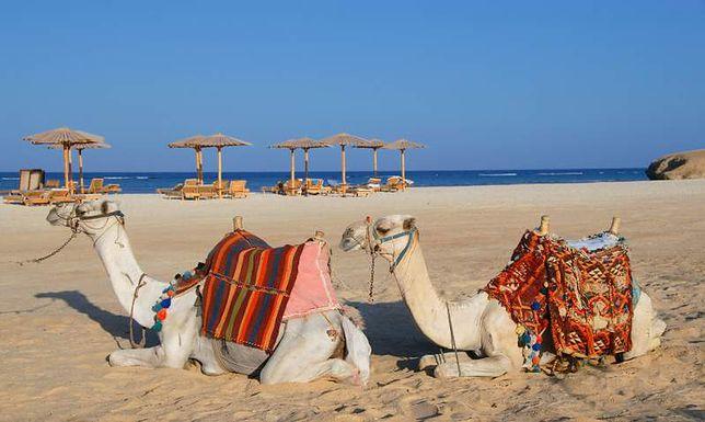 Czy to koniec wakacji w Egipcie?