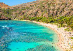 Hawaje - zapierający dech podwodny świat
