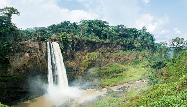 Podróżnicza pasja zawiodła Leopolda Janikowskiego aż do Kamerunu