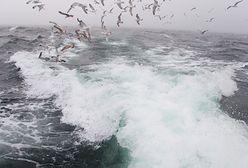 Pogoda nad morzem pod znakiem wiatru i sztormów