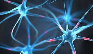 Nowa technologia może pomóc w leczeniu wielu chorób