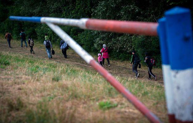 Imigranci z Syrii na granicy z Węgrami