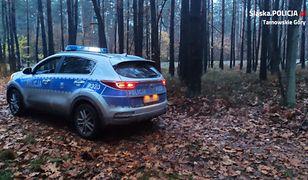 Śląsk. 86-letni grzybiarz zagubił się w lesie. Szczęśliwy finał poszukiwań