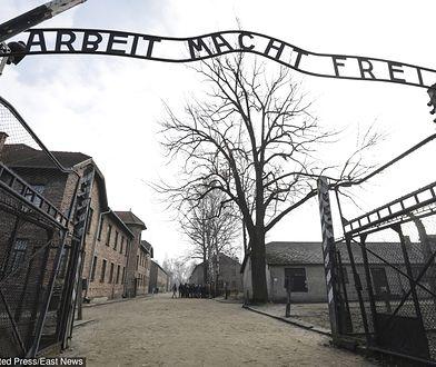 Taki wyjazd do Auschwitz odbyło już przeszło 37 tys. brytyjskich uczniów i studentów