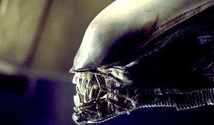 """Kadr z filmu """"Obcy - 8. pasażer Nostromo"""""""