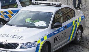Funkcjonariusze szukają polskich tablic. Sypią się mandaty