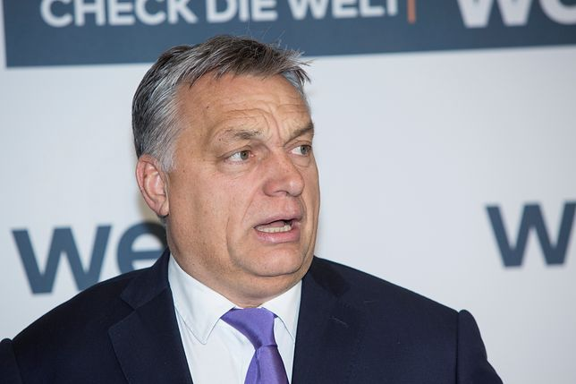 Węgrzy znów postawią na Orbana?