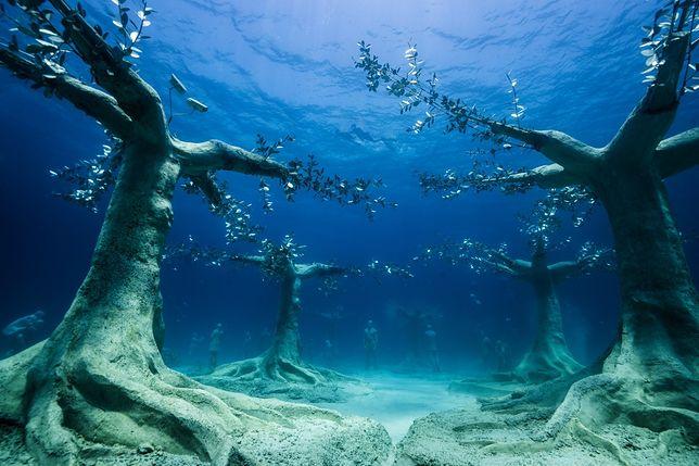 Podwodne muzeum na Cyprze
