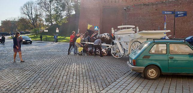 Kraków: upadł koń ciągnący dorożkę z turystami. Przechodnie ratowali zwierzę