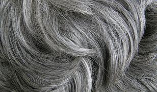 O siwe włosy warto dbać naturalnymi metodami, by ich dodatkowo nie zniszczyć