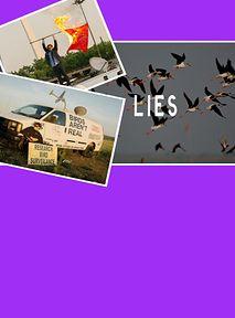 """Przebudzeni Amerykanie wierzą, że ptaki nie istnieją. """"To są rządowe DRONY"""""""