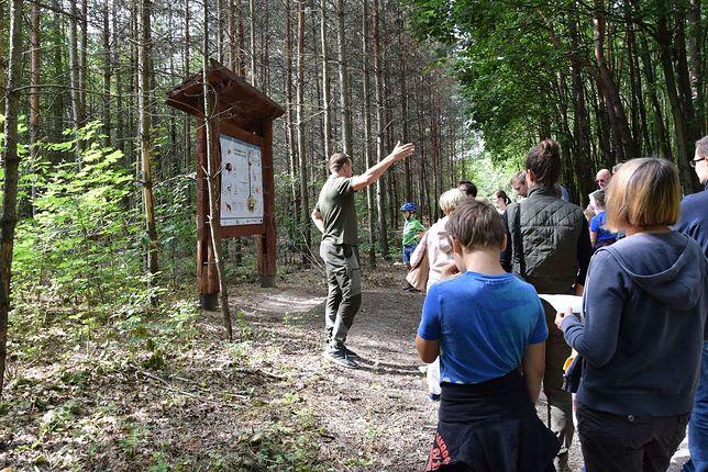 Warszawa. Lasy Miejskie zapraszają na wspólne spacery po lesie