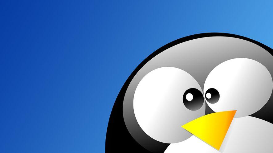 Linux z rekordowym wzrostem w sierpniu, Windows 10 i macOS tracą