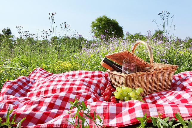 Nie wiesz, co zabrać na piknik? Sprawdź nasze propozycje
