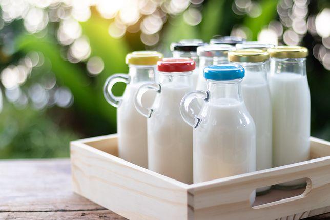 Czy mleko jest zdrowe?