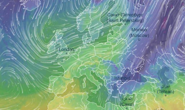 Korytarz ciepła nad Polską. Styczeń dawno taki nie był