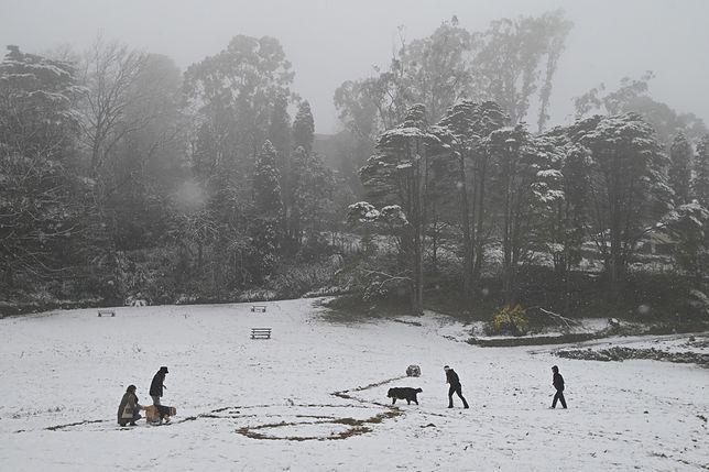 W Australii zanotowano opady śniegu