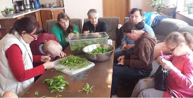 U Burych Misiów zamieszkają Syryjczycy