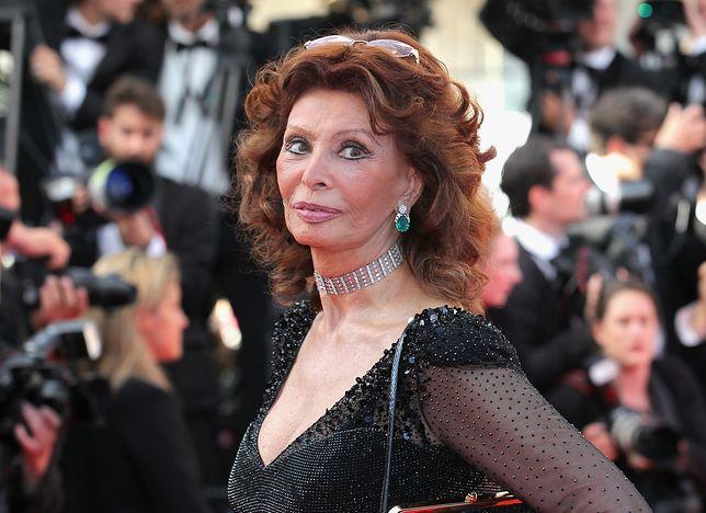 Sophia Loren obchodzi 70-lecie kariery