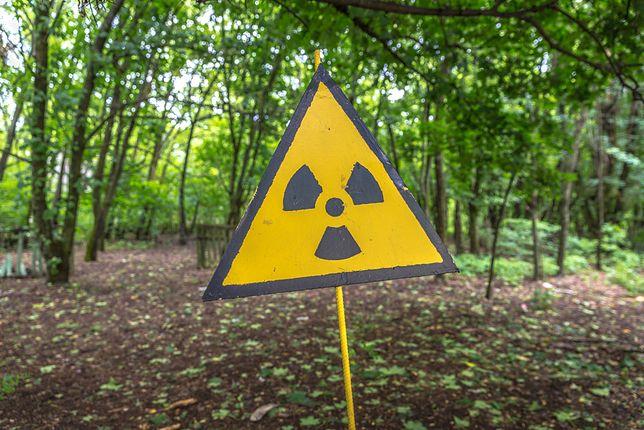 Dobra nowina dla wielbicieli Czarnobyla. Można będzie wejść w dotychczas zakazaną strefę