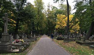 Wyszków. Przerażające znalezisko na cmentarzu. Trzeba było wzywać saperów