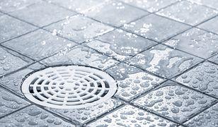 Jak odetkać odpływ prysznicowy? Radzimy, jak uporać się z zatkanym brodzikiem