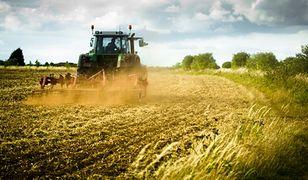 Najwięcej odkładają rolnicy