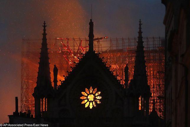Katedra Notre Dame w ogniu. Śledczy podali przyczynę pożaru