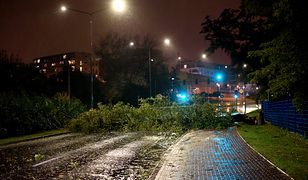 Skutki orkanu Ksawery