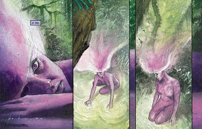 """Czarna Orchidea"", scen. Neil Gaiman, rys. Dave McKean"