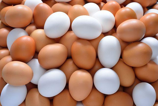 Skażone jaja można zwracać do sklepów, w których zostały zakupione