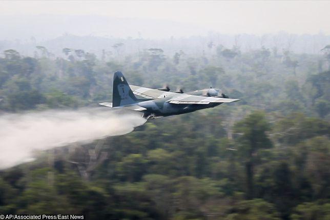 #UgaśmyPłucaŚwiata. Amazonia płonie - wojsko walczy z żywiołem