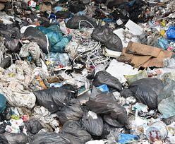 Niezwykłe odkrycie w sortowni śmieci w Kaliszu. Pokazali zdjęcia