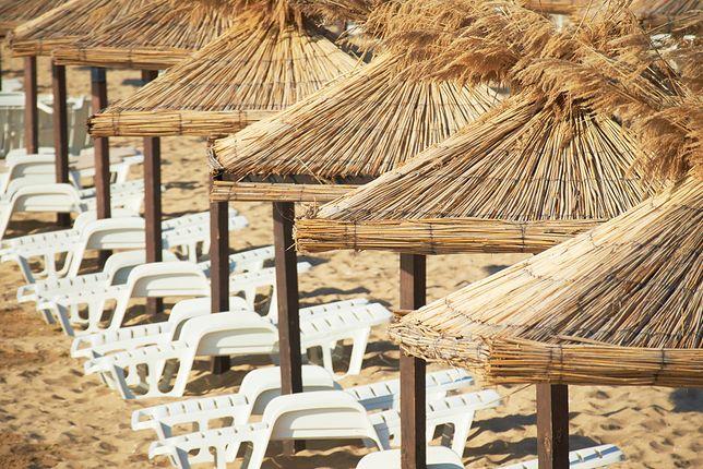 Złote Piaski to zdecydowanie kierunek dla plażowiczów. Znajdziemy tu 4 kilometry plaży z naprawdę złotym piaskiem i z Błękitną Flagą