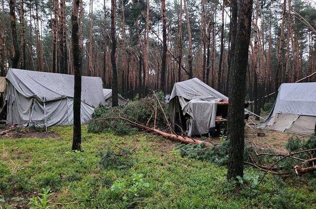 Powalone drzewa i zniszczone namioty na terenie obozu w Kostkowicach
