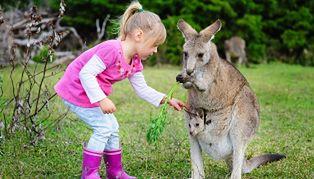 Moda na egzotyczne zwierzęta trafiła do Polski
