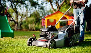 Wiosenne porządki w ogrodzie - jakie maszyny i narzędzia są niezbędne? | Media Expert