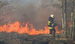 Biebrzański Park Narodowy w płomieniach. Strażakom walczącym z żywiołem brakuje sprzętu