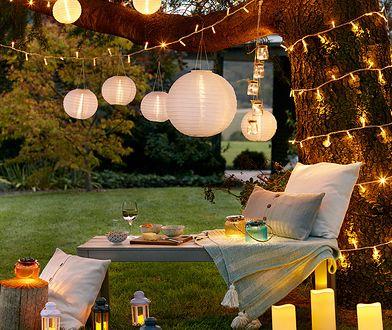 Rozświetlony ogród